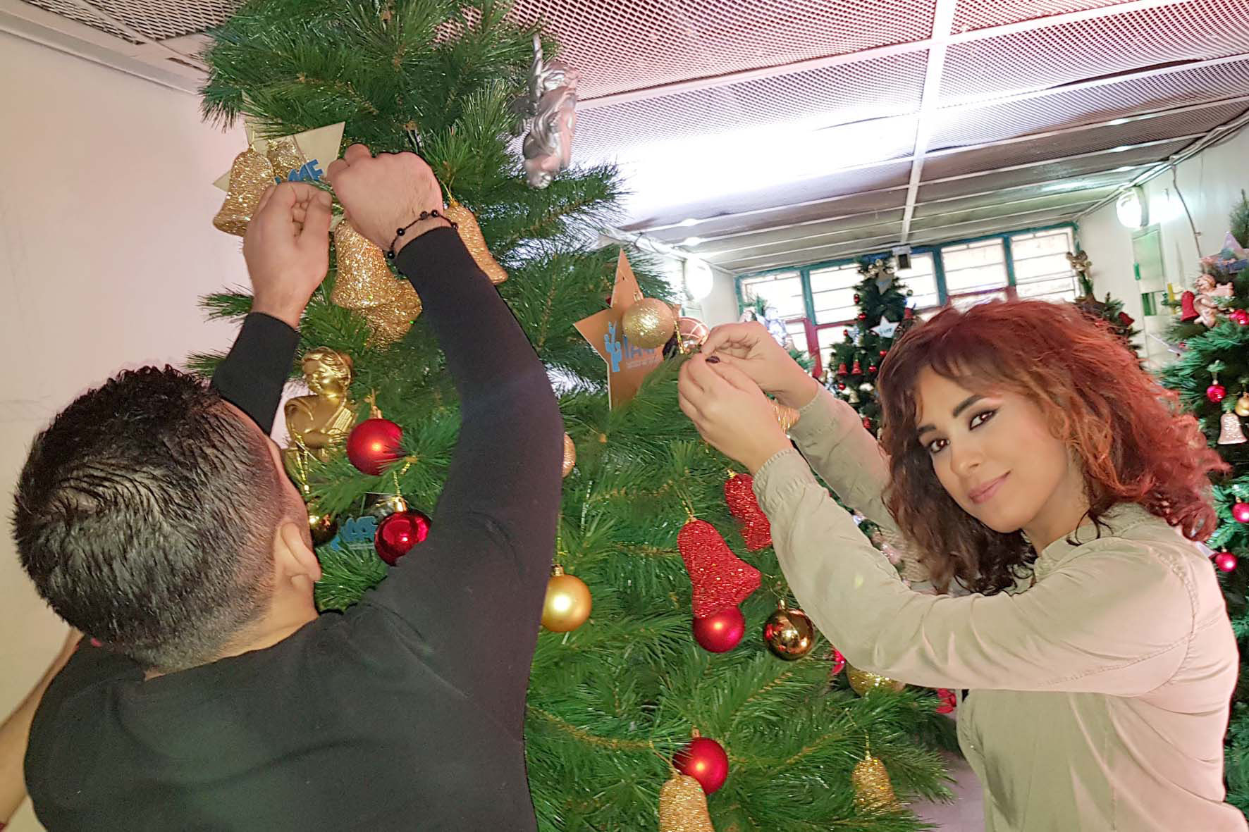 actress andree nacouzi helping in the decoration of the christmas tree.